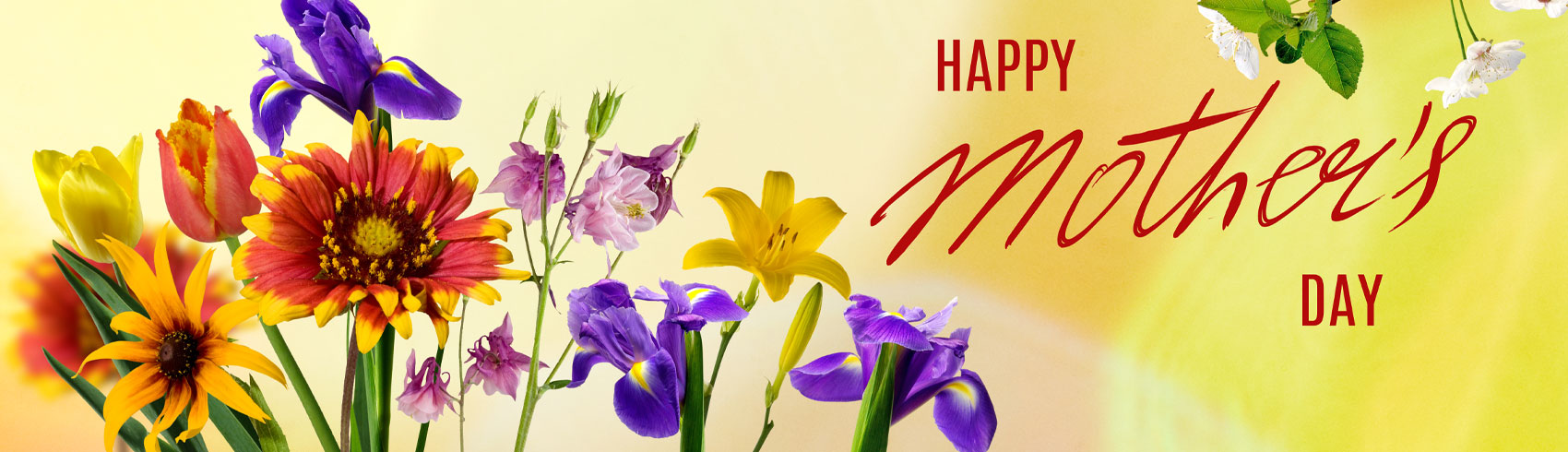 mother-s-day-category-header.jpg