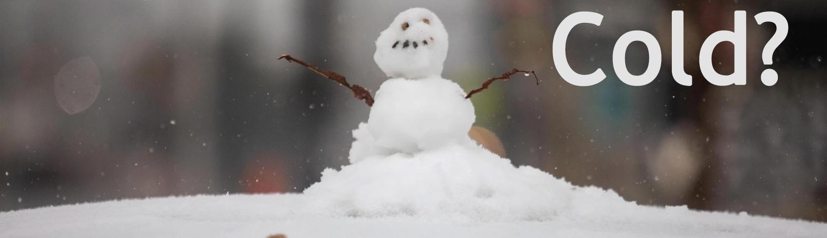 snow-in-austin-copy.jpg