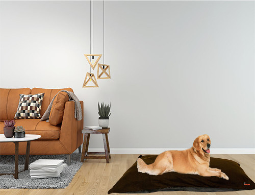 Kosipet Brown Wine Colour dog beds Cushions, machine washable,  removable covers studio