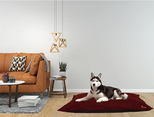 Kosipet Wine Colour cheap dog beds, machine washable,  removable covers studio