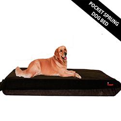 Kosipet Pocket Sprung Dog Beds