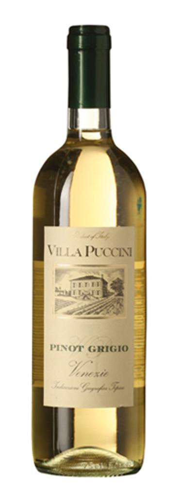 Villa Puccini Pinot Grigio