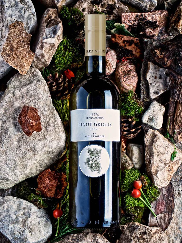 Terra Alpina Pinot Grigio by Alois Lageder 2019
