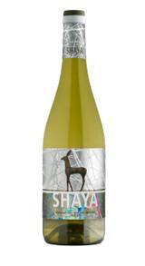 Shaya Verdejo 2017