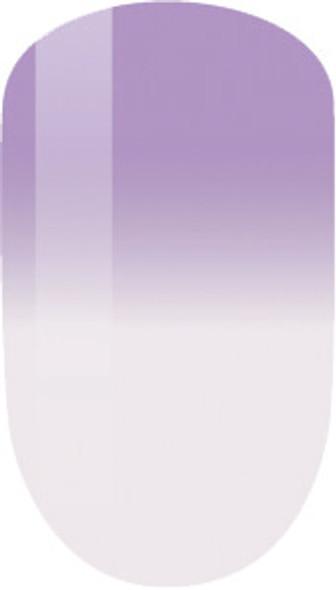 MPMG20 - Lavender Blooms