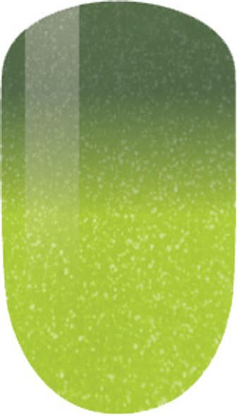 MPMG42 - Limelight