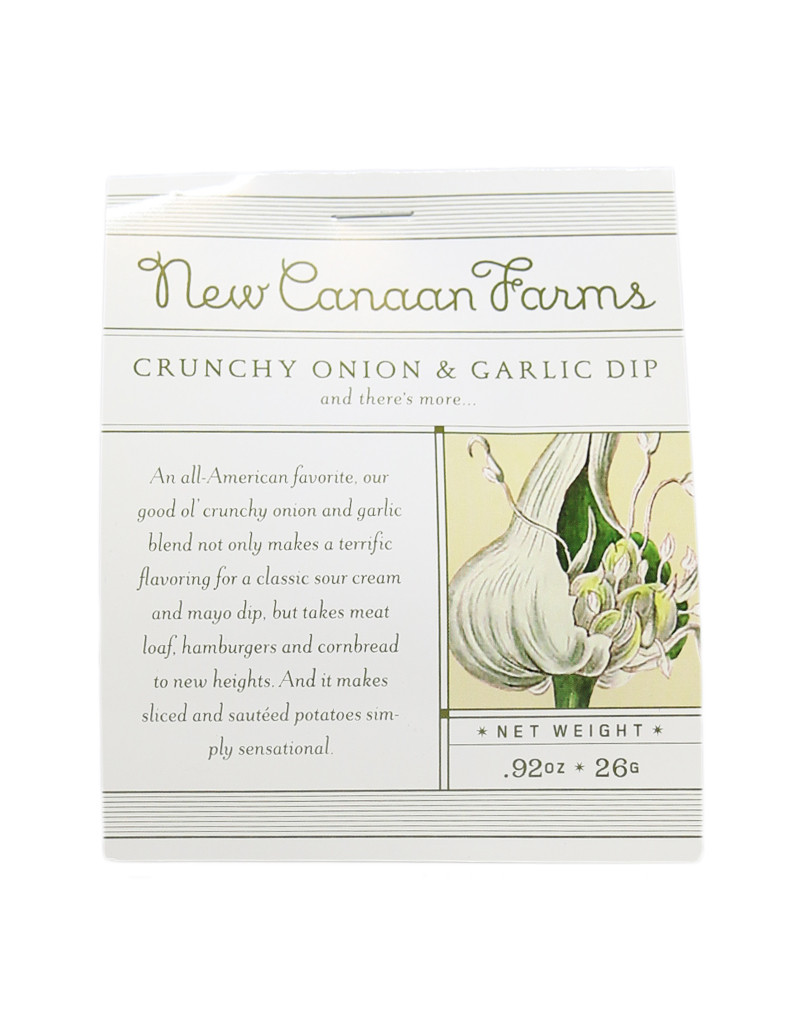 Crunchy Onion & Garlic Dip