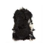 Icelandic Sheepskin Throw Rug in Black with White Spot. Add warmth, texture and luxury to your space with this naturally silky soft long haired Icelandic Merino sheepskin throw rug in black with white spot. Front view.