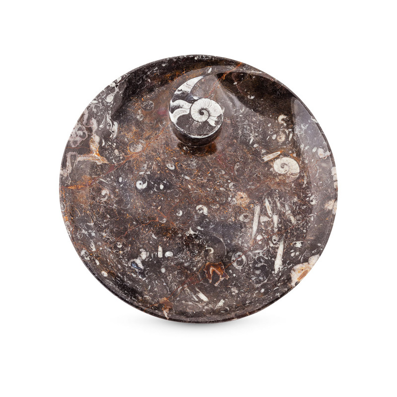 Fossil Marble Plate