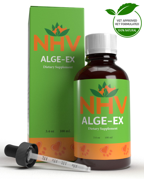 Alge-Ex for cats