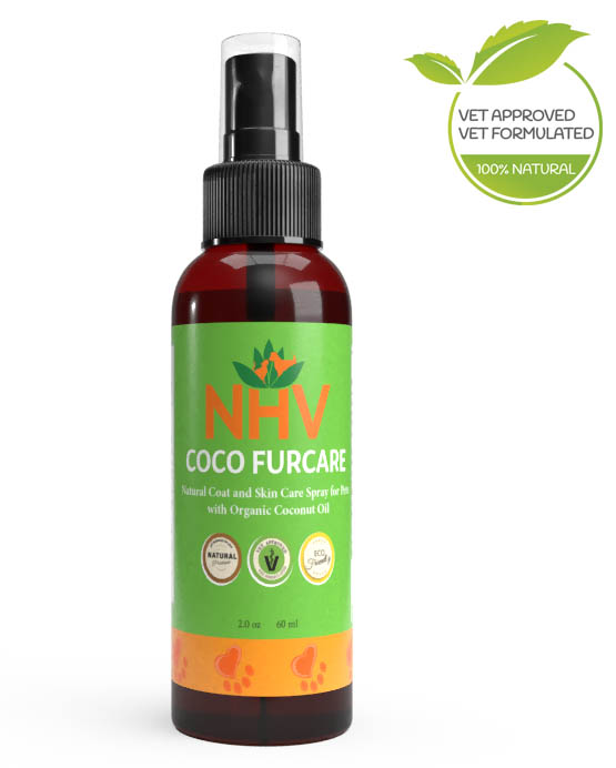 Coco Furcare for Cats