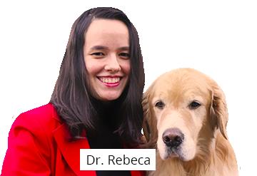 dr-rebeca.png