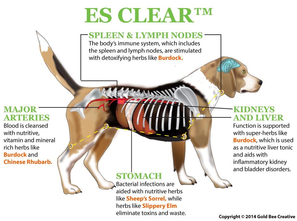 ES Clear For Cats And Dogs
