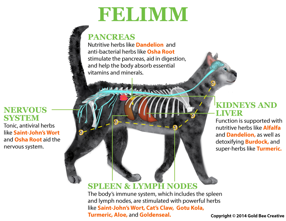 Felimm For Cats And Dogs