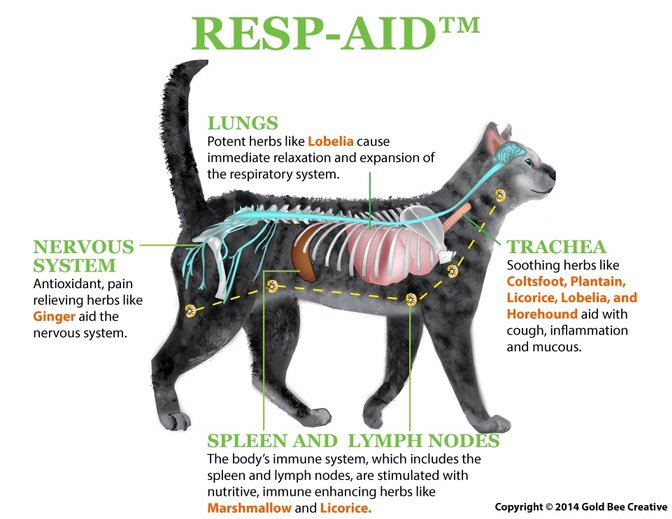 RESP-AID respiratory supplement for cats