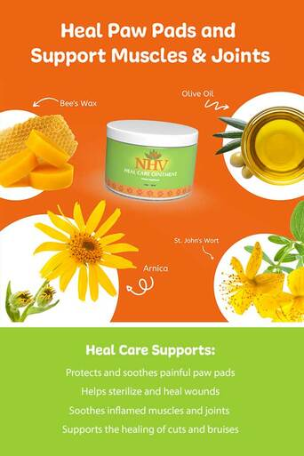 Heal Care Ointment for cats