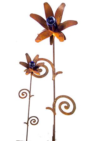 B005 Blue Bottle Flower