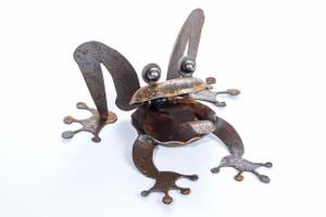 N51 Deme Frog