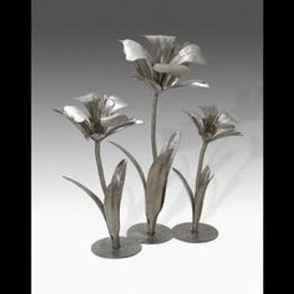 Impression of Daffodils