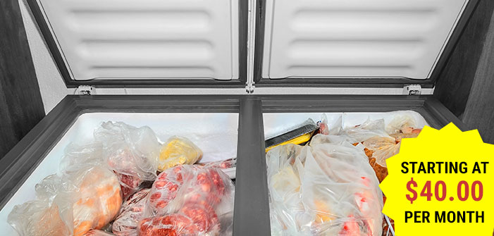 Click here to shop our collection of freezers.