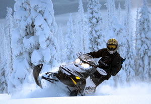 The Three Best Snowmobile Covers