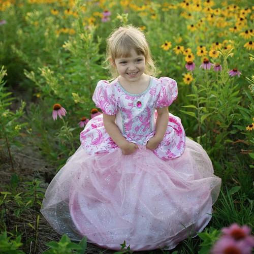Royal Pretty Pink Princess Gown Ages 2-4 Years