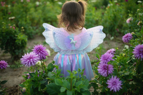 Magical Unicorn Skirt and Wings
