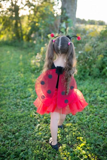 Glitter Ladybug 3pcs Set