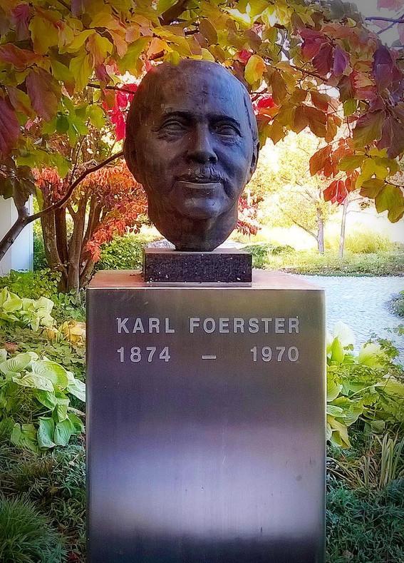 Familiarity Breeds Respect  (Calamagrostis 'Karl Foerster')