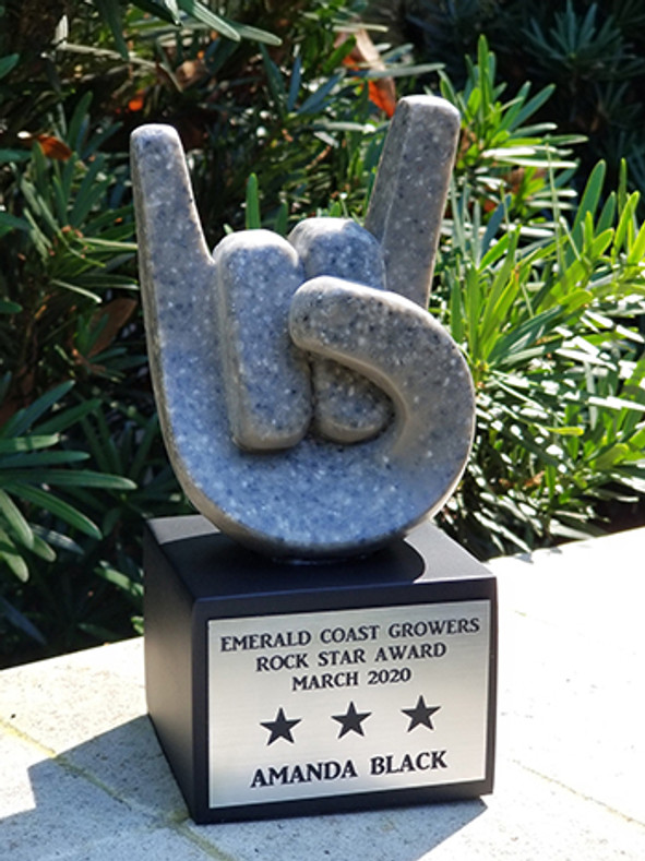 March 2020 Rock Star Award