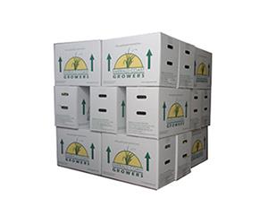 ecg-shipping-boxes2.jpg
