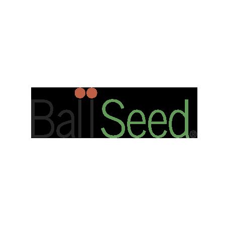 logo-ballseed2x.png