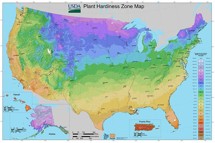 usda-zonemap-all-states-med.jpg