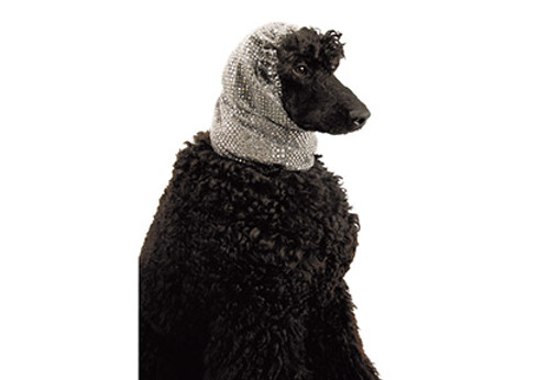 Show Tech Snood Luxe