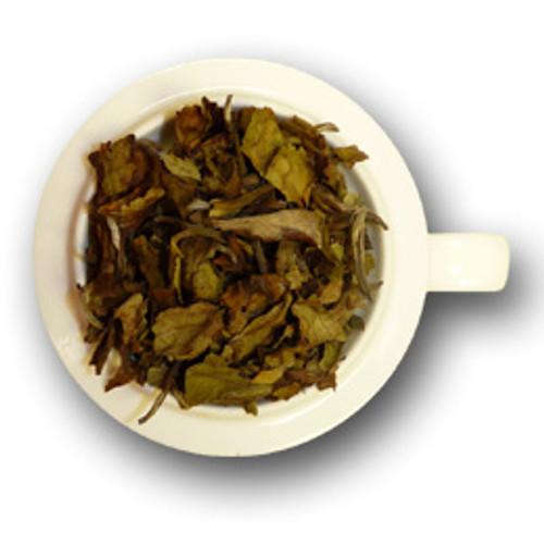 Safari White Tea