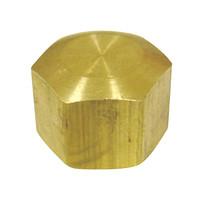 Ace 1/4 in. Compression Brass Cap