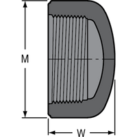 SCHEDULE 80 PVC CAP 2 F.P.T