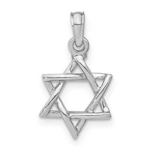 Lex & Lu 14k White Gold 3D Polished Star of David Charm-Lex & Lu