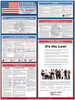 Federal Labor Law Poster (English) - Set of 4