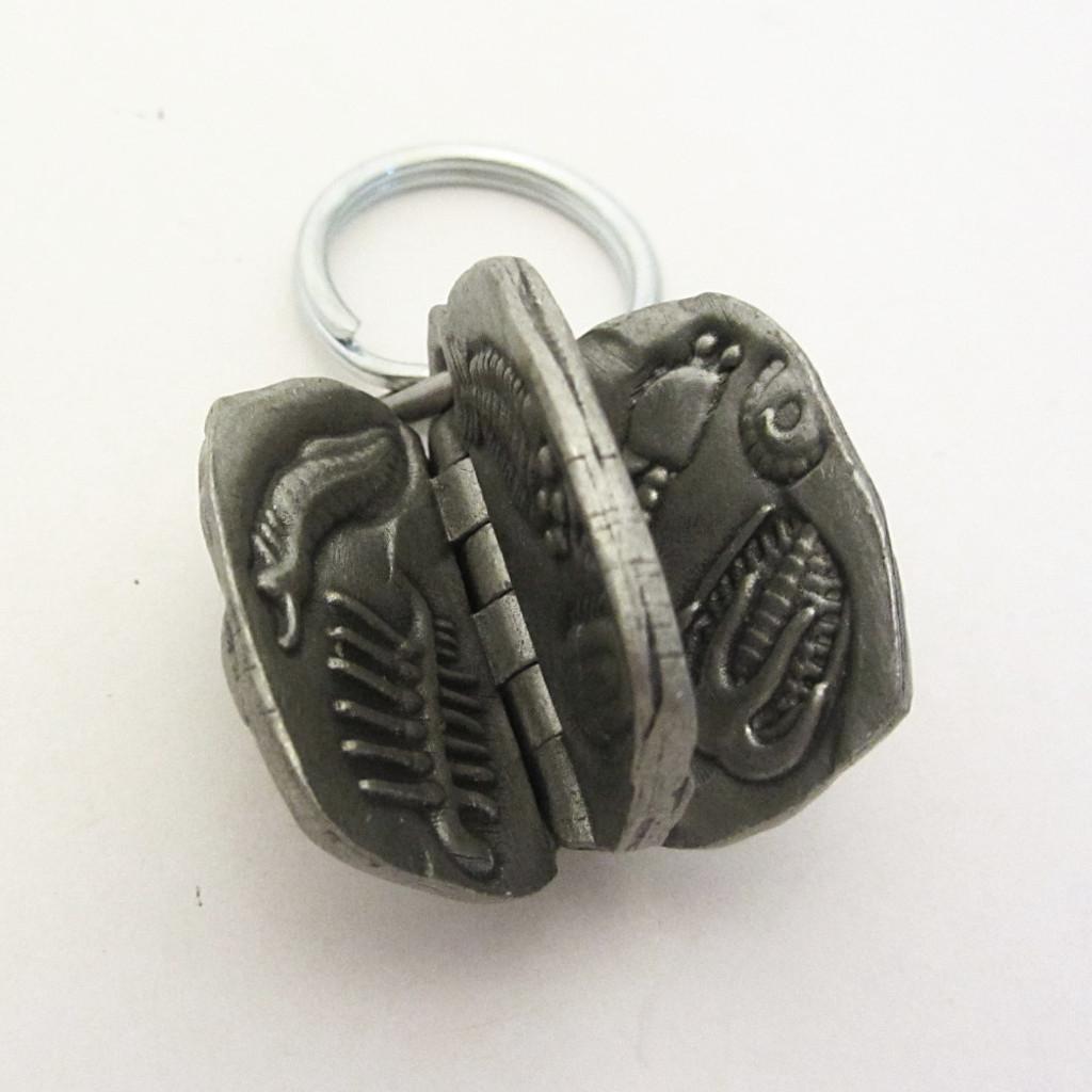 Burgess Shale Fossils Keychain