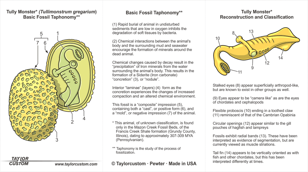 Tully Monster Necklace product packaging