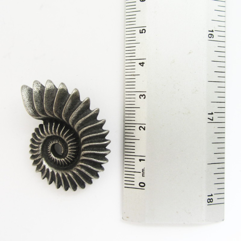 Helicoprion Tooth-Whorl Pin