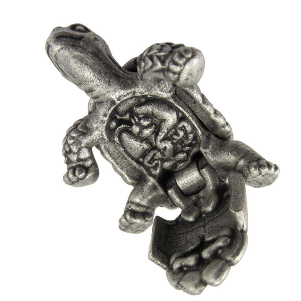 Anatomical Tortoise