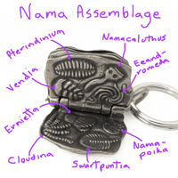 Rdiacaran Biota Keychain Nama Assemblage with notes