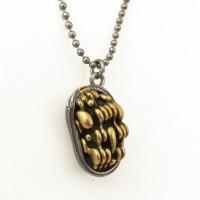 chloroplast necklace