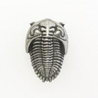 trilobite drawer pull