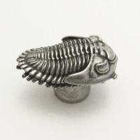 Phacopid Trilobite Drawer-Pull