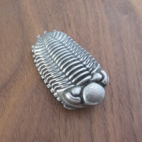 trilobite lapel pin brooch
