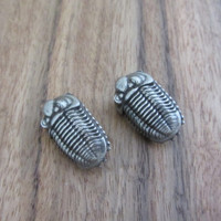 trilobite lace locks