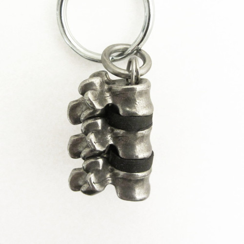 spinal column keychain